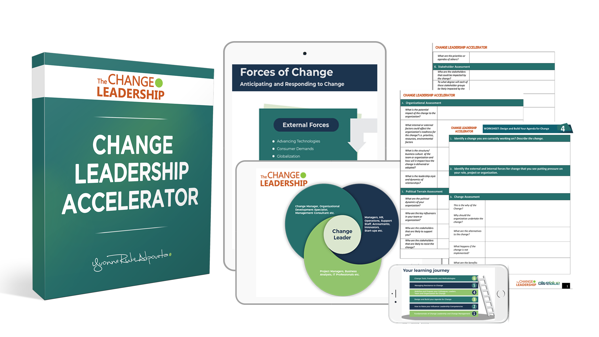 Change Leadership Accelerator Training and Coaching 2